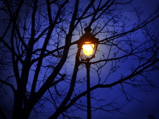 streetlamp at night