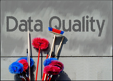 data-quality-with-brushes
