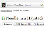 Needle in a Haystack Blog Area