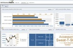 First Look at the New SAP BusinessObjects Exploration Views Prototype