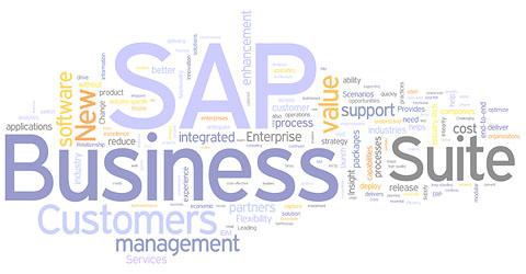 Sap Business Suite Sap Business Suite 7