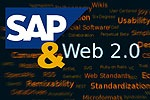 SAP and Web 2.0 in a Nutshell, Summarized and Explained